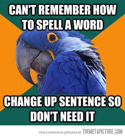 funny-paranoid-parrot-meme-spelling
