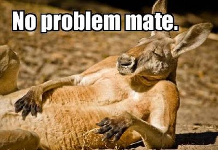 No_Problem_Mate